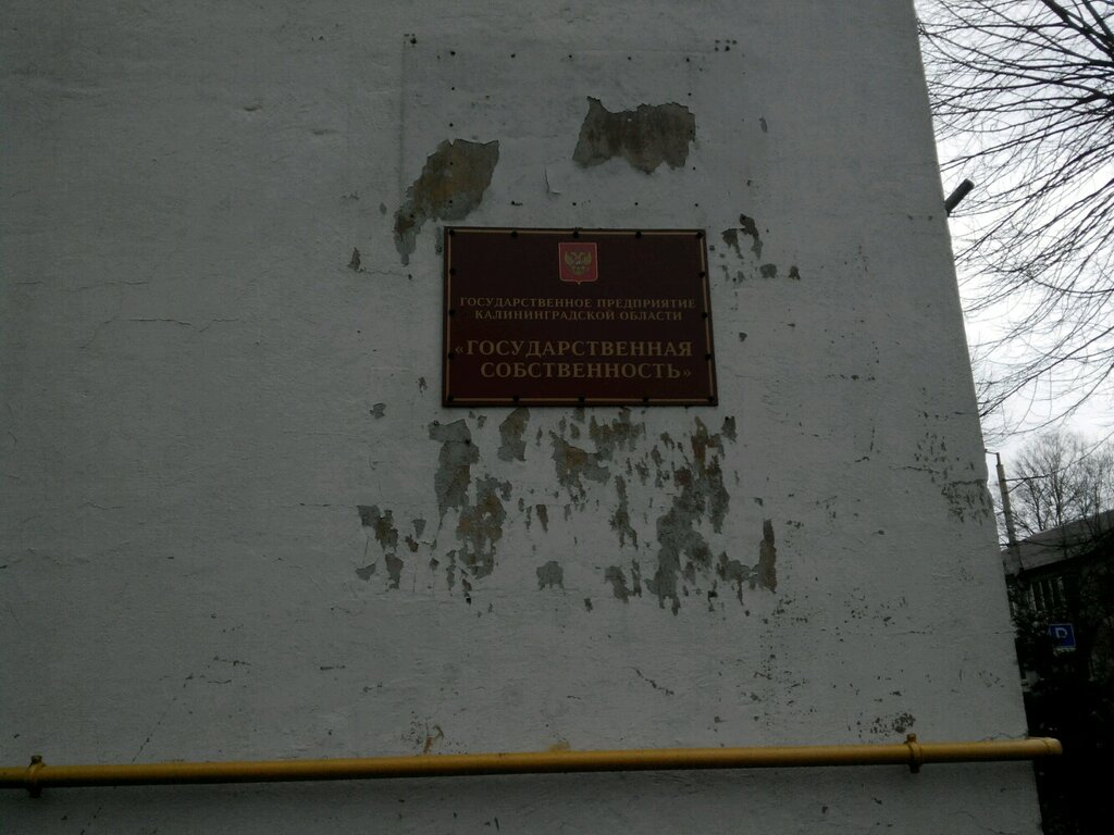 управление недвижимостью — Государственная собственность — Калининград, фото №3
