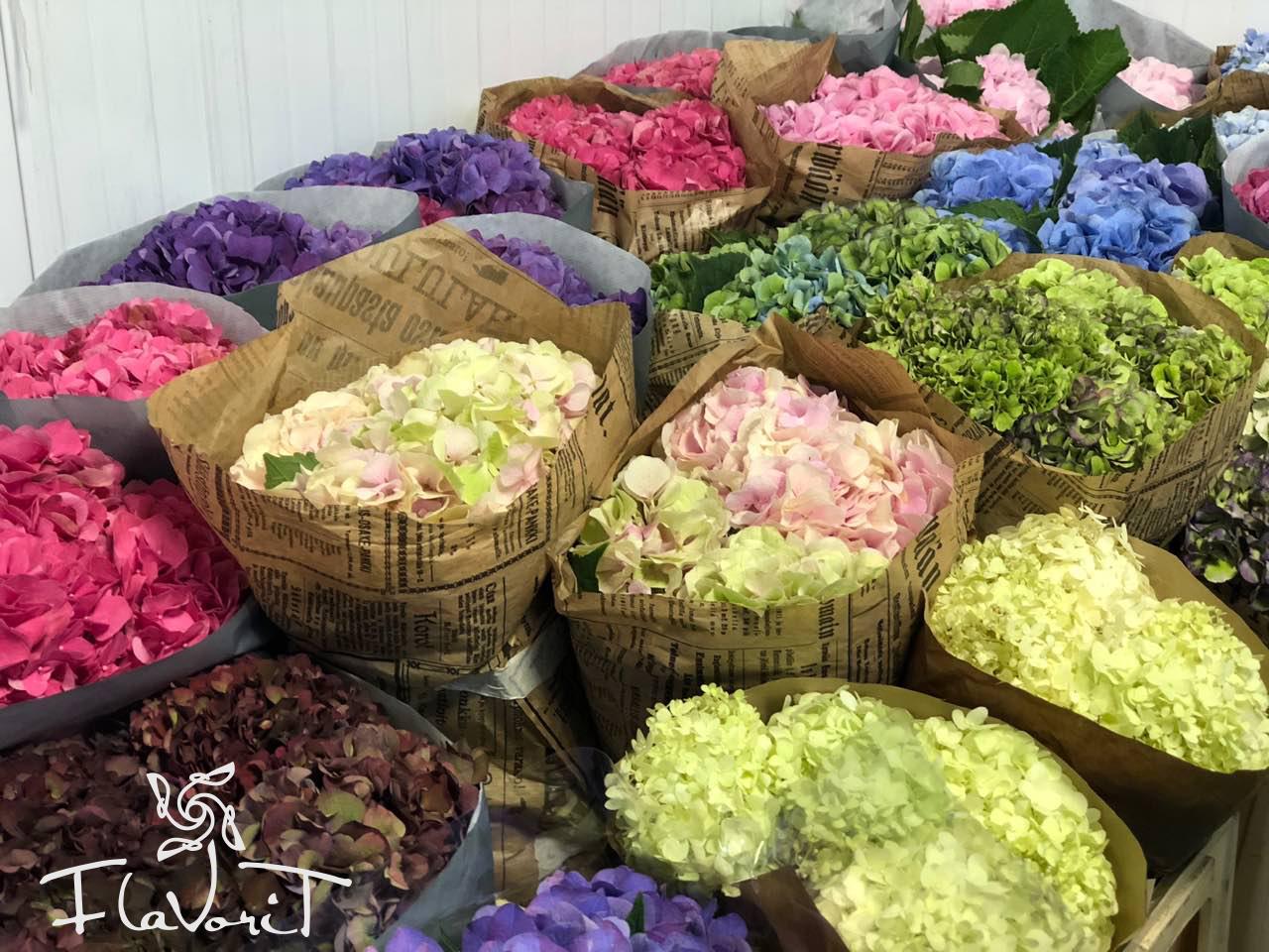 Много цветов, оптовый магазин территория цветов