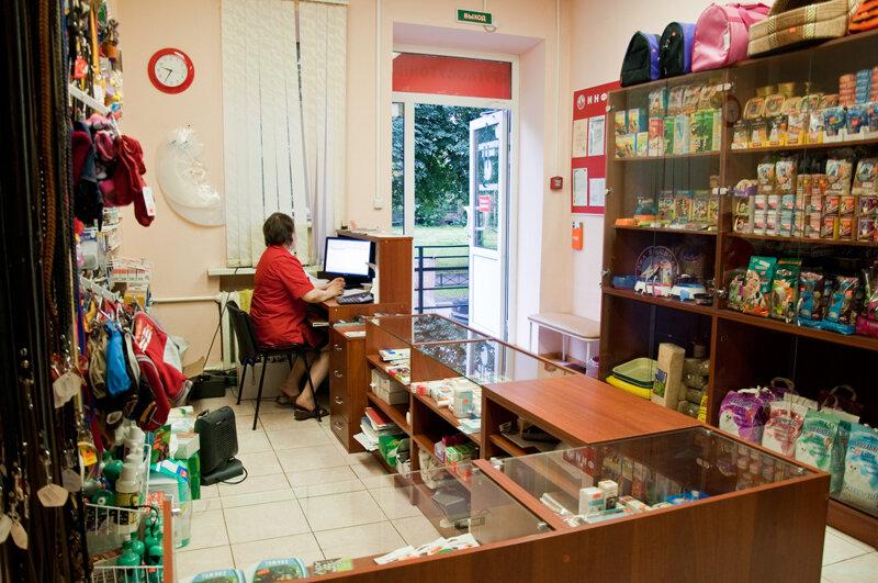 ветеринарная клиника — Красный лис — Санкт-Петербург, фото №2