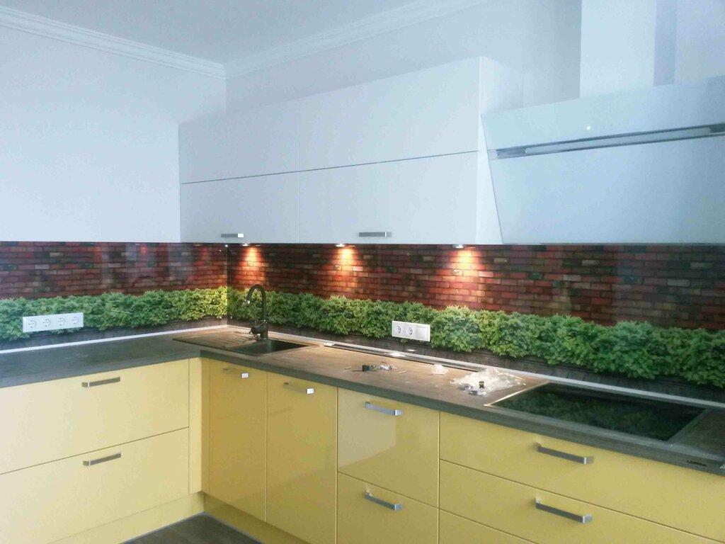 Рабочая стена на кухне из стекла фото