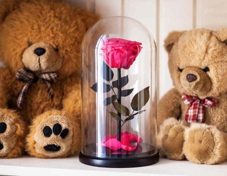 магазин цветов — Роза в колбе — Москва, фото №1