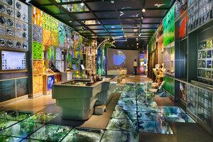 «Государственный Дарвиновский музей» фото 1