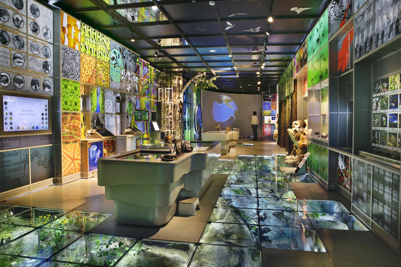 «Государственный Дарвиновский музей» фото 2