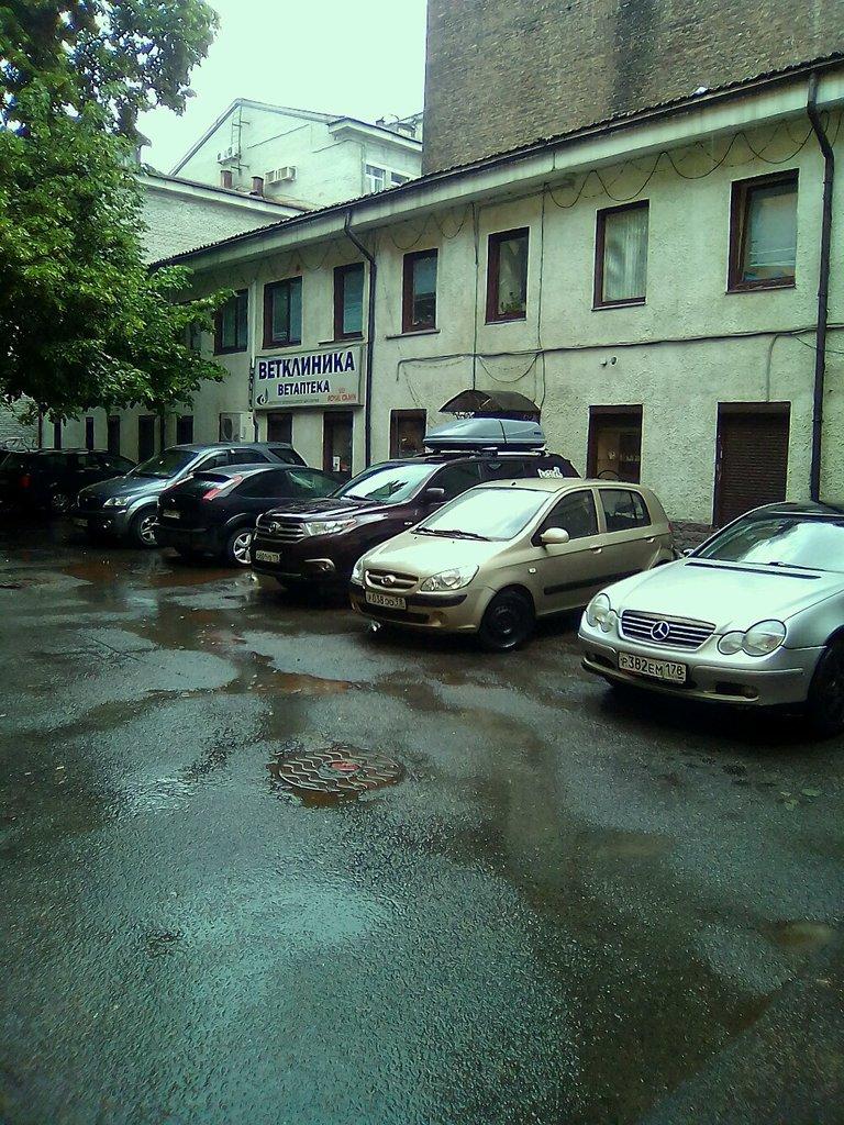 ветеринарная клиника — Институт ветеринарной биологии — Санкт-Петербург, фото №8