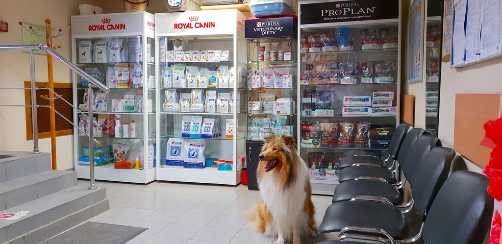 ветеринарная клиника — Ветеринарный госпиталь Флагман — Санкт-Петербург, фото №4