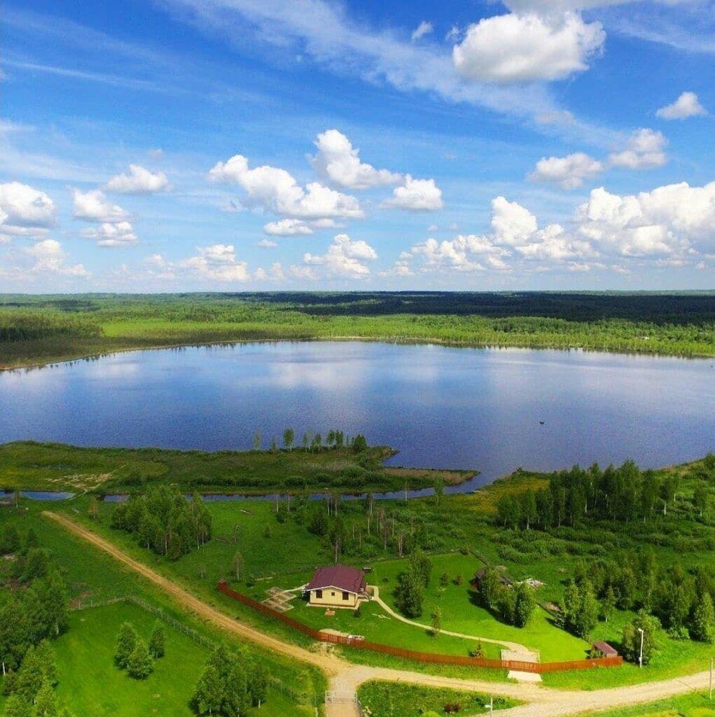 савельево ярославская область фото нас