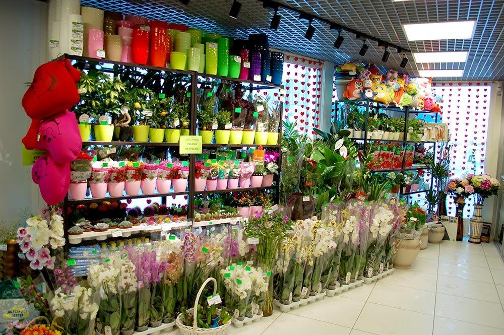 Магазины цветов г орша, букет цветов для