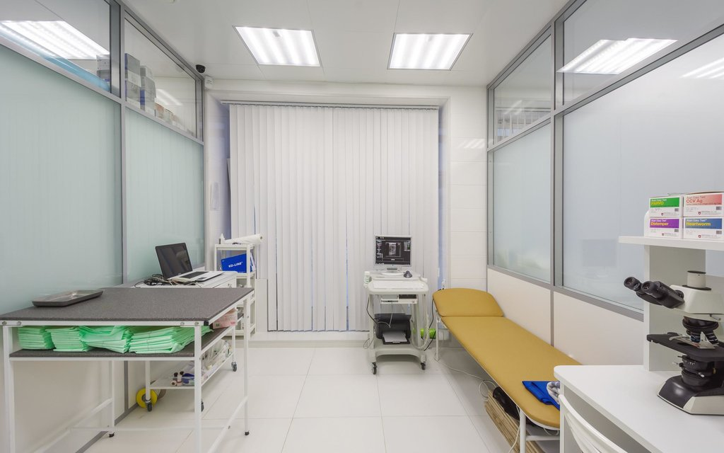 ветеринарная клиника — Доктор Неболит — Санкт-Петербург, фото №6