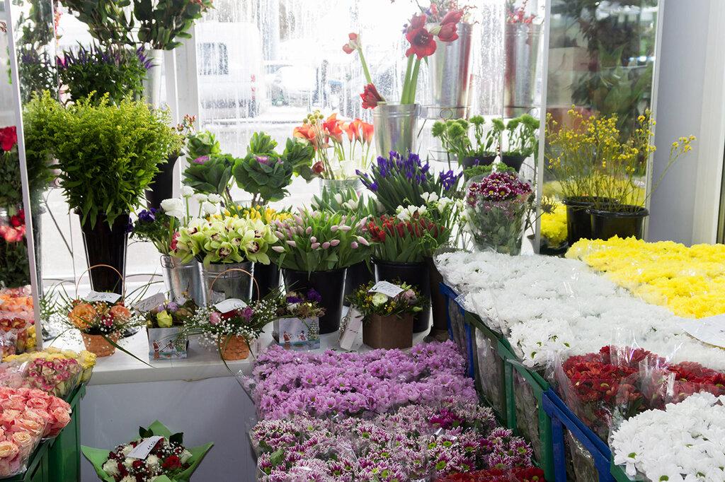 Цветов цимлянске, оптовый магазин территория цветов