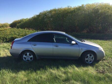 Купить Nissan Primera пробег 223 000.00 км 2003 год выпуска