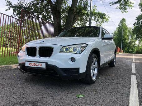 Пеликан автосалон в москве авто с пробегом кредит юридическому лицу под залог птс