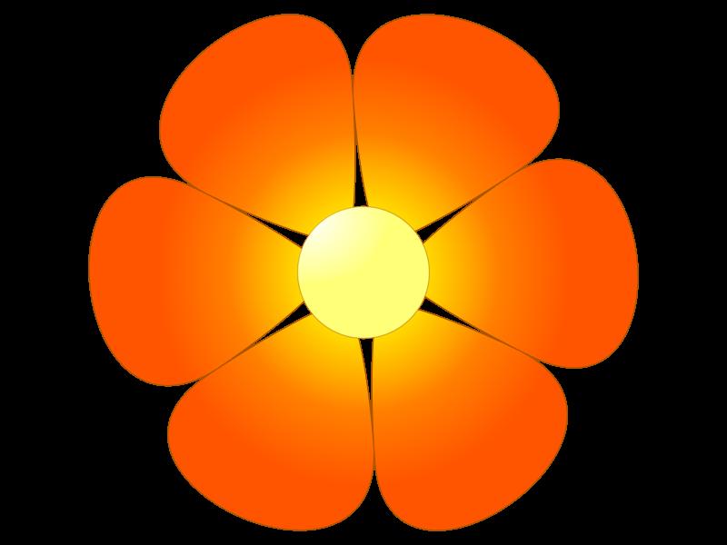 оранжевый цветочек картинка назвал этот род