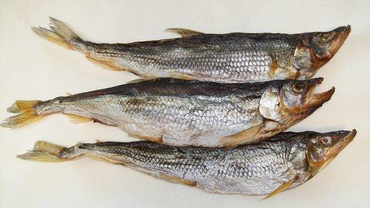 срок годности рыбы