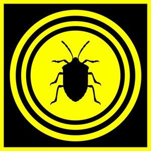 Липучка для тараканов своими руками
