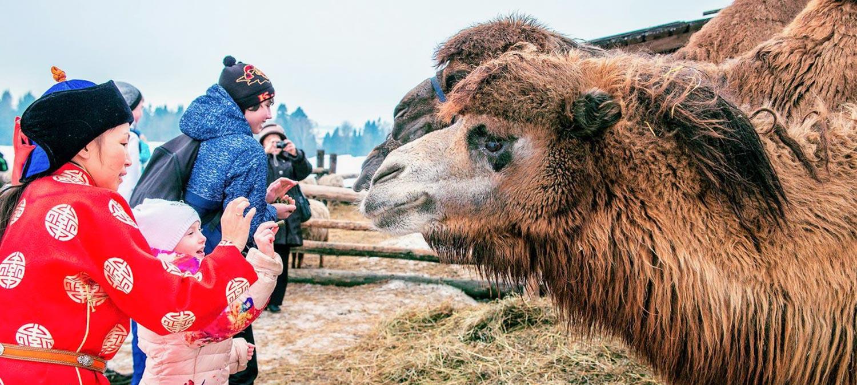 «Этнографические парки и музеи для детей» фото материала