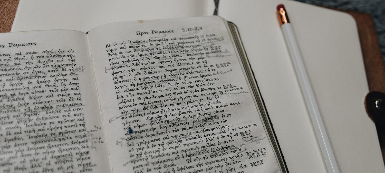 «Где учить языки бесплатно» фото материала