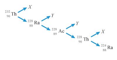 На рисунке показана схема цепочки радиоактивных превращений, в результате которой изотоп тория ... превращается в изотоп радия ....
