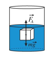 Брусок массой m погружен в жидкость и находится в равновесии.