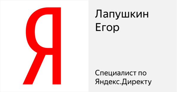 Лапушкин Егор - Сертифицированный специалист