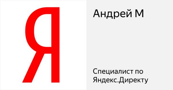 Андрей М - Сертифицированный специалист