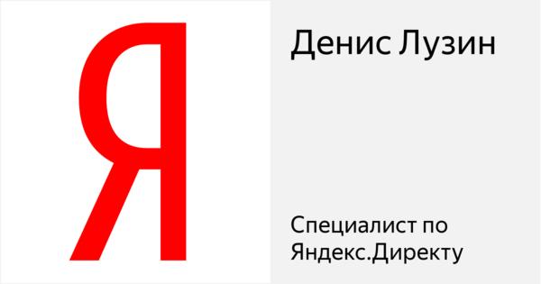 Денис Лузин - Сертифицированный специалист