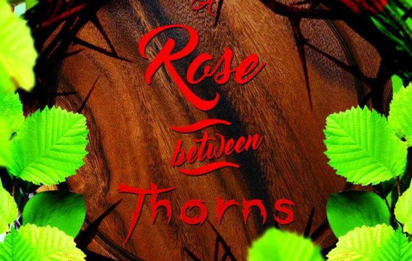 a rose amongst thorns faulkner s a Thorns quotes from brainyquote  i'm thorn-sighted the thorns on the rose are in really sharp definition for me, the rose petals a little fuzzier danny meyer.