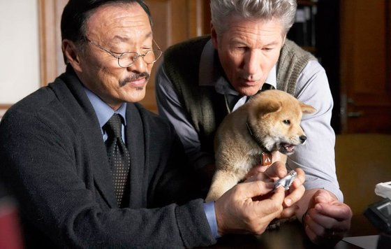 Кадр из Хатико: Самый верный друг / Hachi: A Dog's Tale (2008)