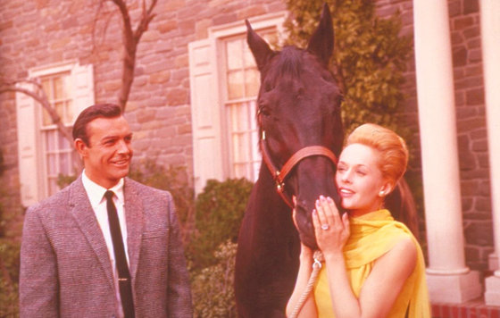 Картинки по запросу марни 1964