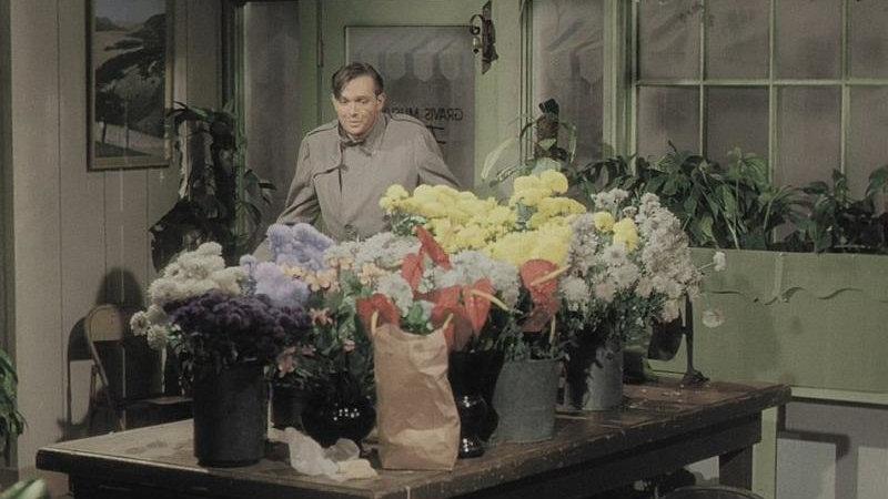 Фильм про цветок который ел людей 1960