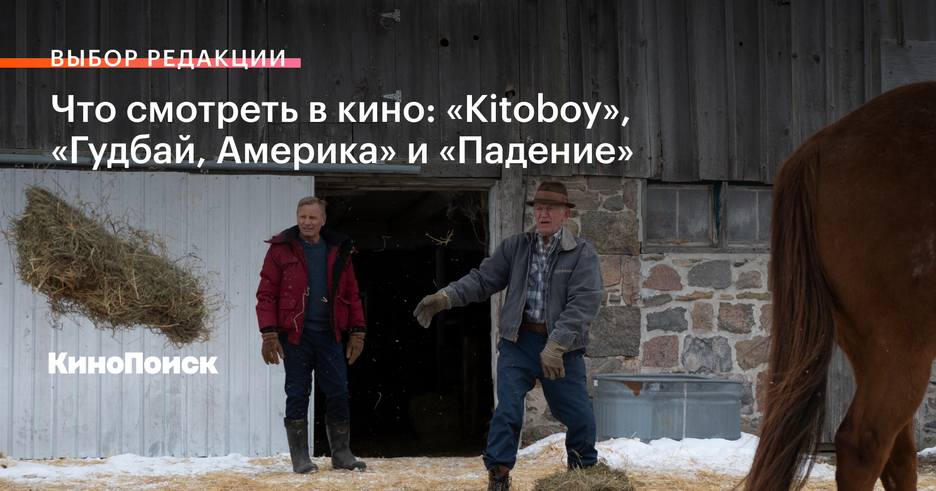 Что смотреть в кино: Kitoboy, «Гудбай, Америка» и «Падение»