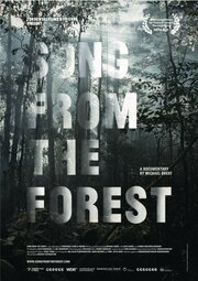 Song from the Forest (2013)
