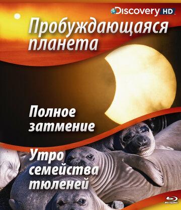 Пробуждающаяся планета (2004) полный фильм онлайн
