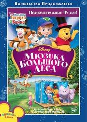 Мои друзья Тигруля и Винни: Мюзикл Большого леса (2009)