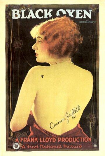 Черные быки (1923)