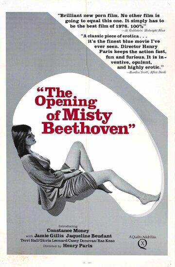Открытие Мисти Бетховен