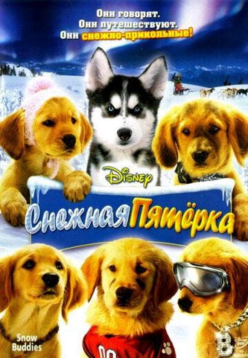 Снежная пятерка (видео)