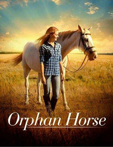 (Orphan Horse)