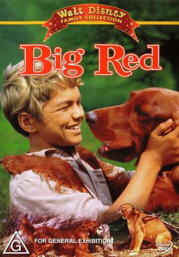 Большой Ред (1962)
