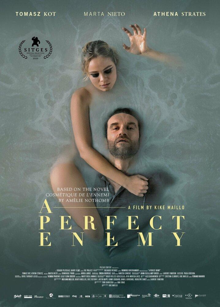 Идеальный враг (2020)
