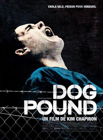 Загон для собак 2009