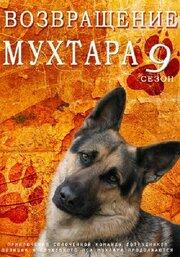 Возвращение Мухтара 9 (2013)