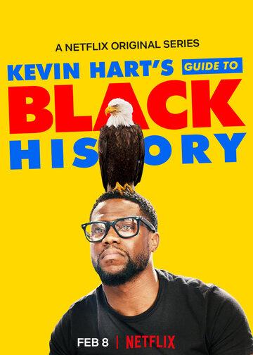 Постер к фильму Афроамериканская история (2019)