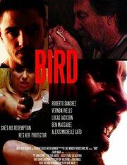 Bird (2019)