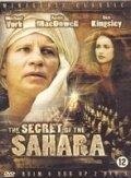 Секрет Сахары (1987)