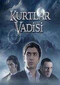 Долина Волков (2003)