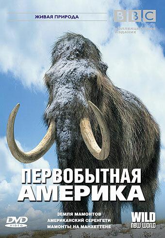 KP ID КиноПоиск 258272