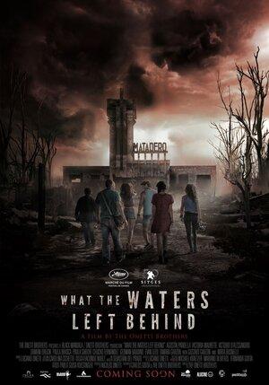 Что воды оставили позади  (2017)