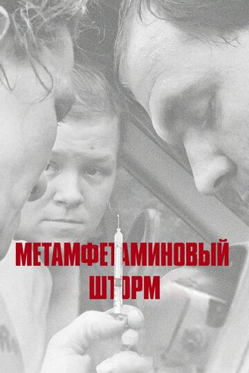 Метамфетаминовый шторм (2017)