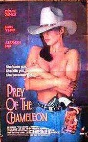 Загадочное исчезновение (1992)