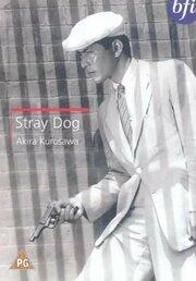 Stray Dog (1999)